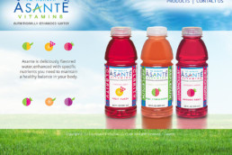 asante_web_design_emagine creations advertising