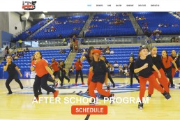 LDF DANCE STUDIO WEBSITE