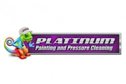 Platinum Painting and Pressure Cleaning Logo Design