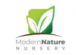 Modern Nature Nursery Logo Design